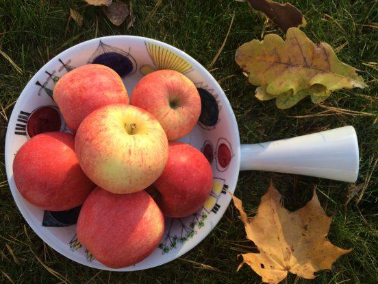 Mrs M Äppelmust äpplen resa