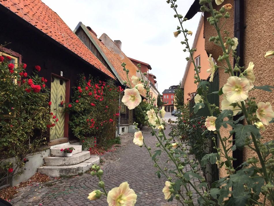 Gotland Visby resa tips