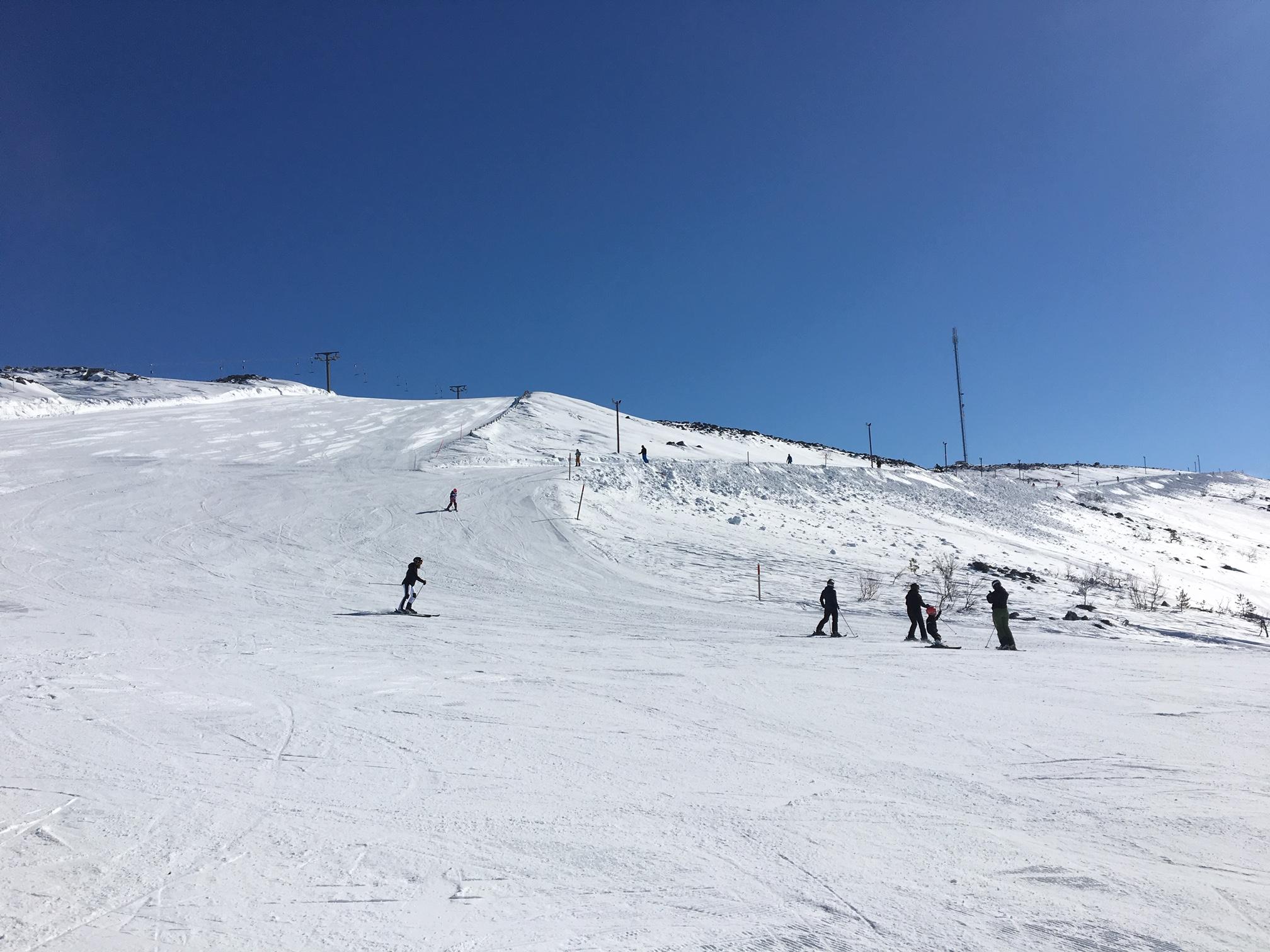björnrike skidor skidresa fjällen tips